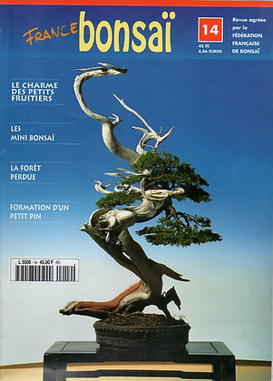 France Bonsaï Nº 14