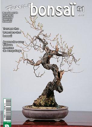 France Bonsaï Nº 91