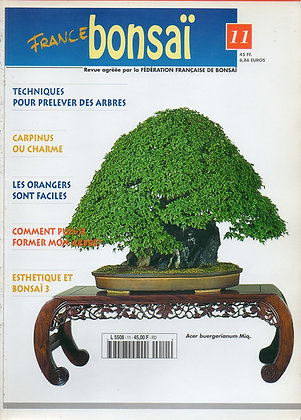France Bonsaï Nº 11