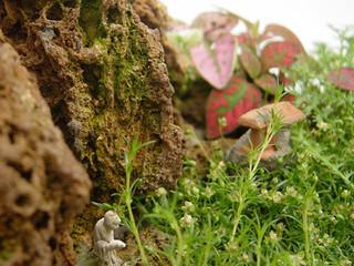 Feng-lui, un paysage en miniature