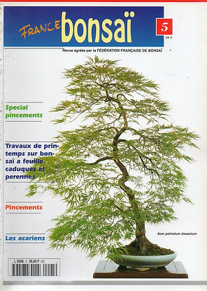 France Bonsaï Nº 5