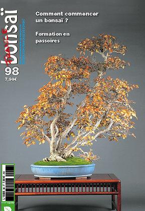 France Bonsaï Nº 98