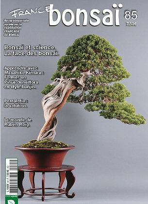France Bonsaï Nº 85