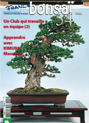 France Bonsaï Nº 54