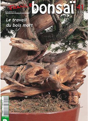 France Bonsaï Nº 41