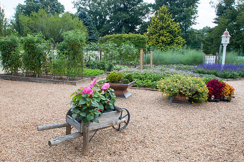 Ron Stanley's vegetable garden with raised beds and flowers.