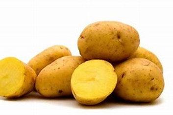 Potato - Yukon Gold