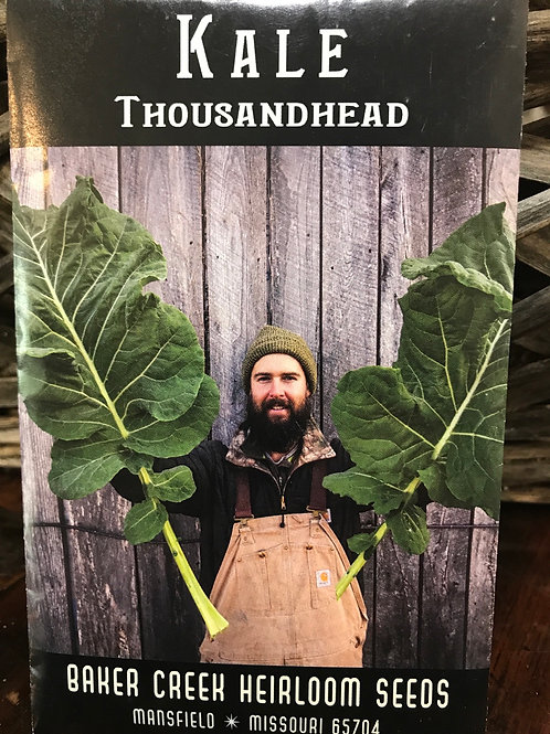 Kale thousandhead