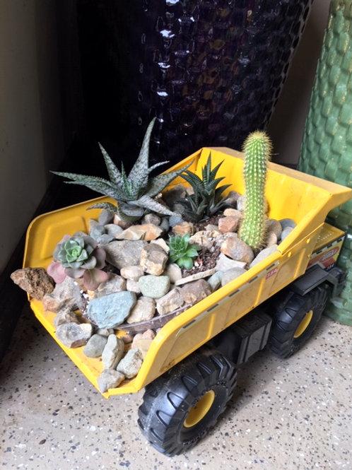 Succulent Dump Truck