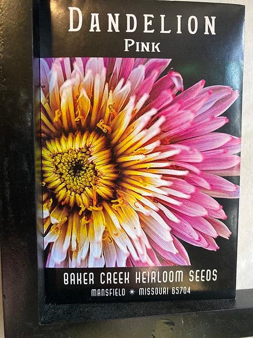 Pink Dandelion Seeds