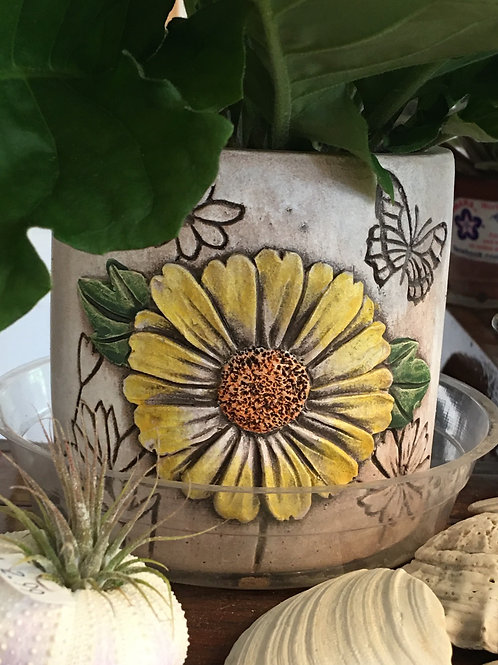 Green plant in a Daisy Ceramic - 4""