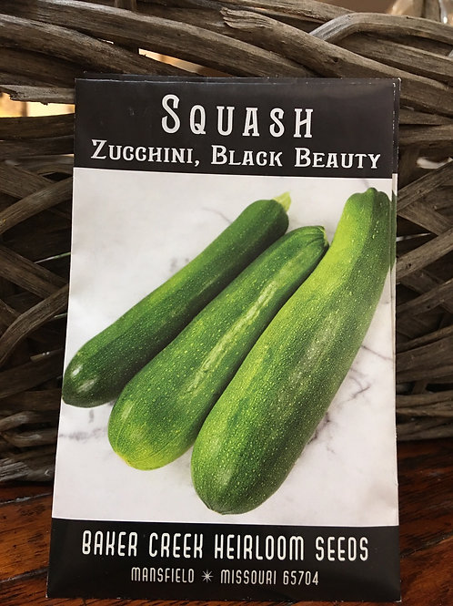 Zucchini - Black Beauty