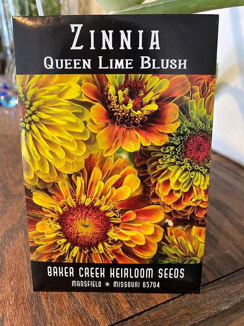 Baker Creek Heirloom Seeds - Zinnia - Queen Lime Blush