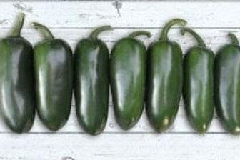 Pepper - Jalapeno Emerald Fire