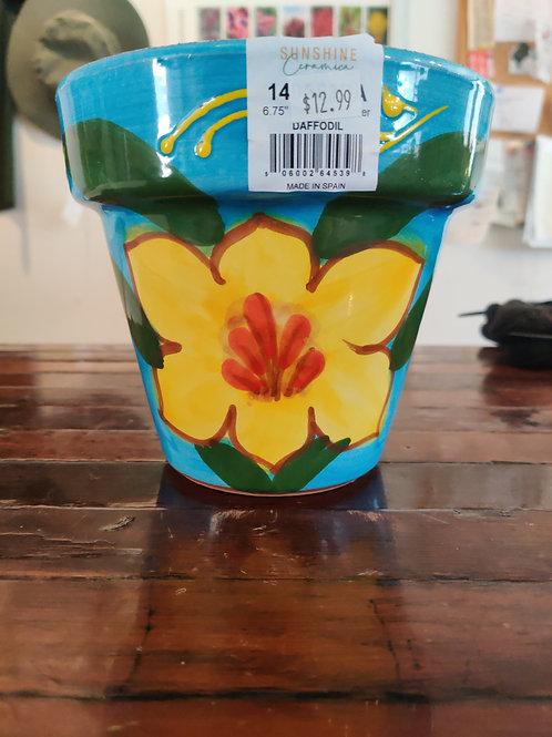 Small Daffodil Planter