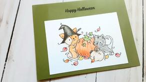 Rachelle Anne Miller - Halloween Cats