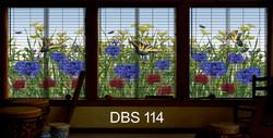 DBS 114