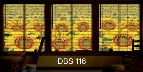 DBS 116