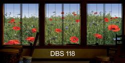 DBS 118