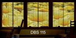 DBS 115