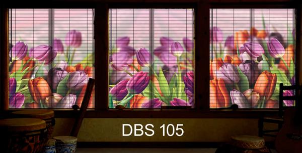 DBS 105