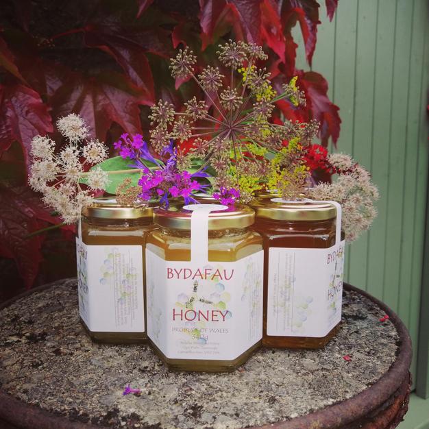Bydafau Mêl / Honey