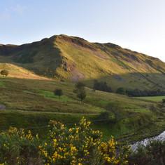 Cwmystwyth Valley