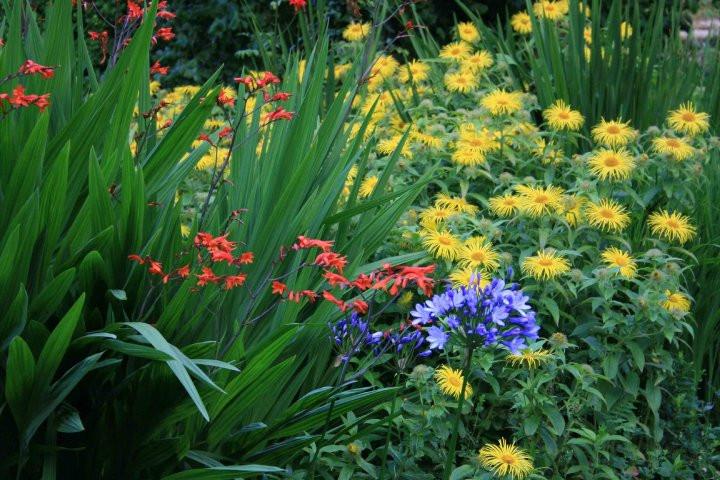 Visit a gorgeous garden