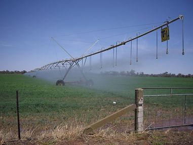 irrigation_1 - Copy.jpg