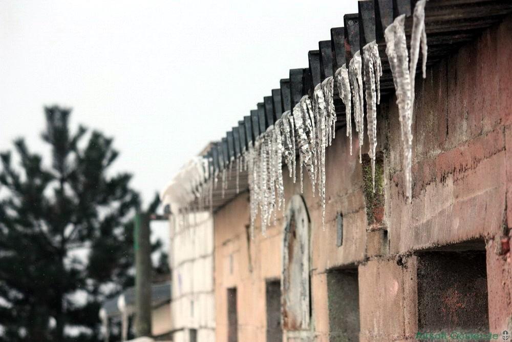 Cold Siege 21.jpg