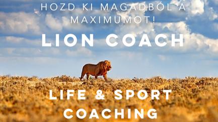 lion-coach-hungary
