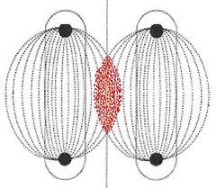 Parallel Bias.jpg