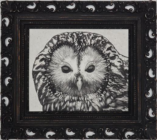 B-MARTIN_061421__Ural-Owl.jpg