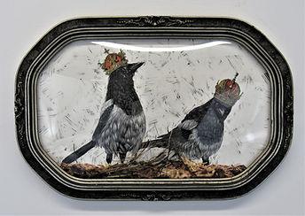 Two Royal Magpies.jpg