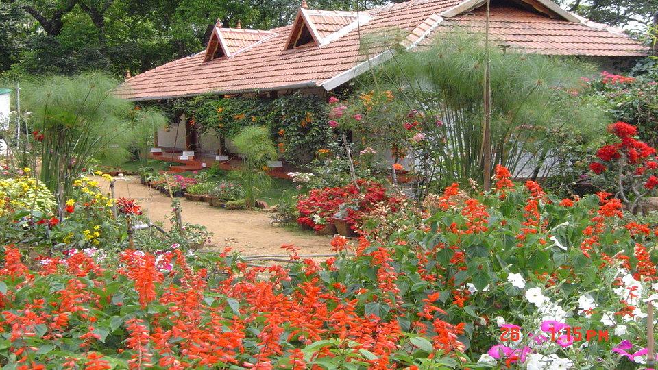 Rosegardens Homestay Munnar