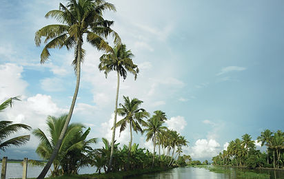endless_backwaters_of_alappuzha_21.jpg