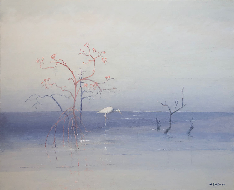 Mangrove in Casamance