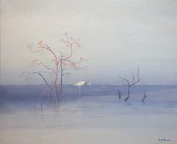Mangrove en Casamance