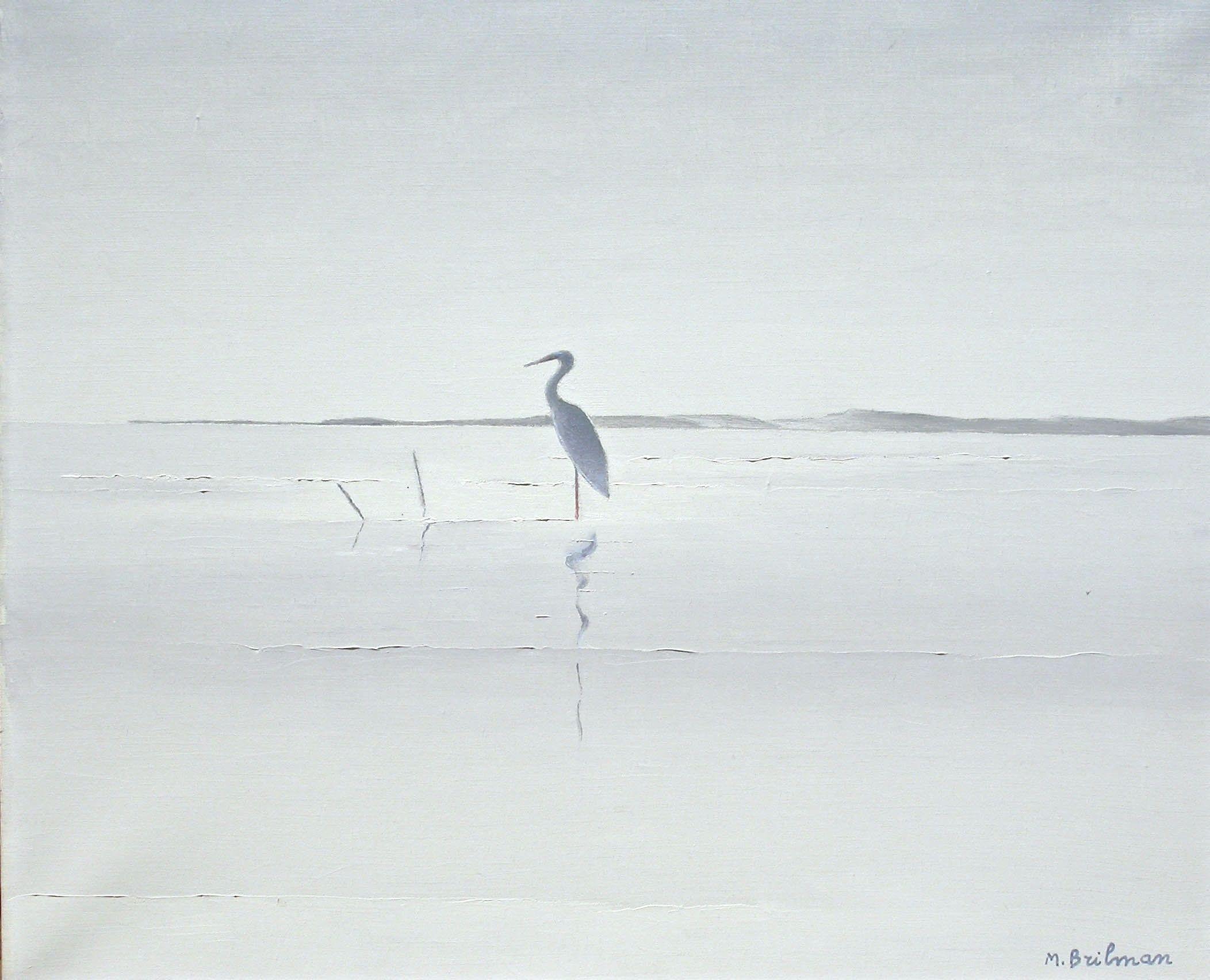 Gray heron in Casamance