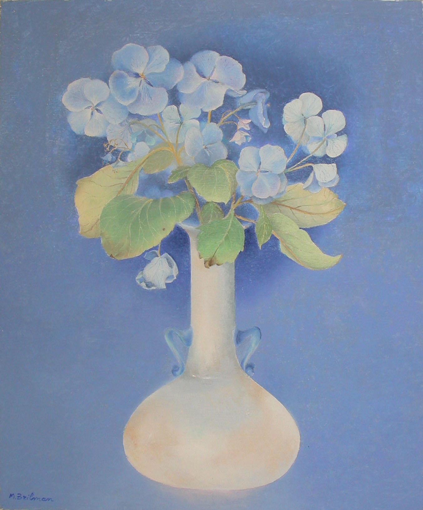 Fleurs d'hortensias