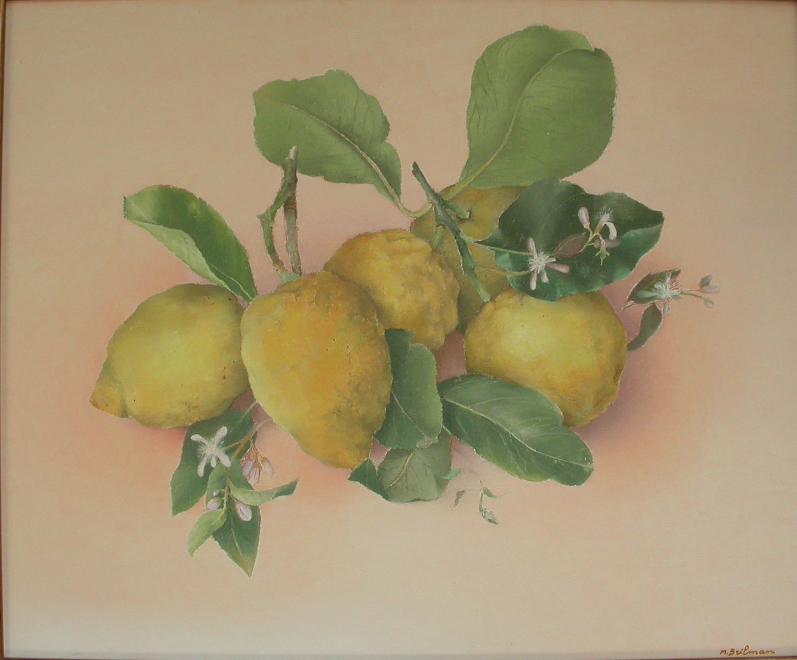 Citrons de Capri