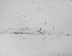 Sailboats on Dart river