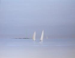 Voiliers dans le Golfe du Morbihan