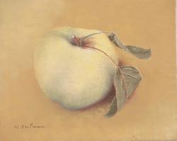 """""""Pomme Calville"""" apple"""