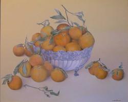 Oranges of Tunisia