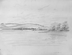Landscape near Calstock