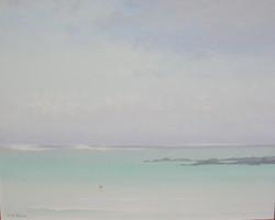 Rochers à l'Île Maurice