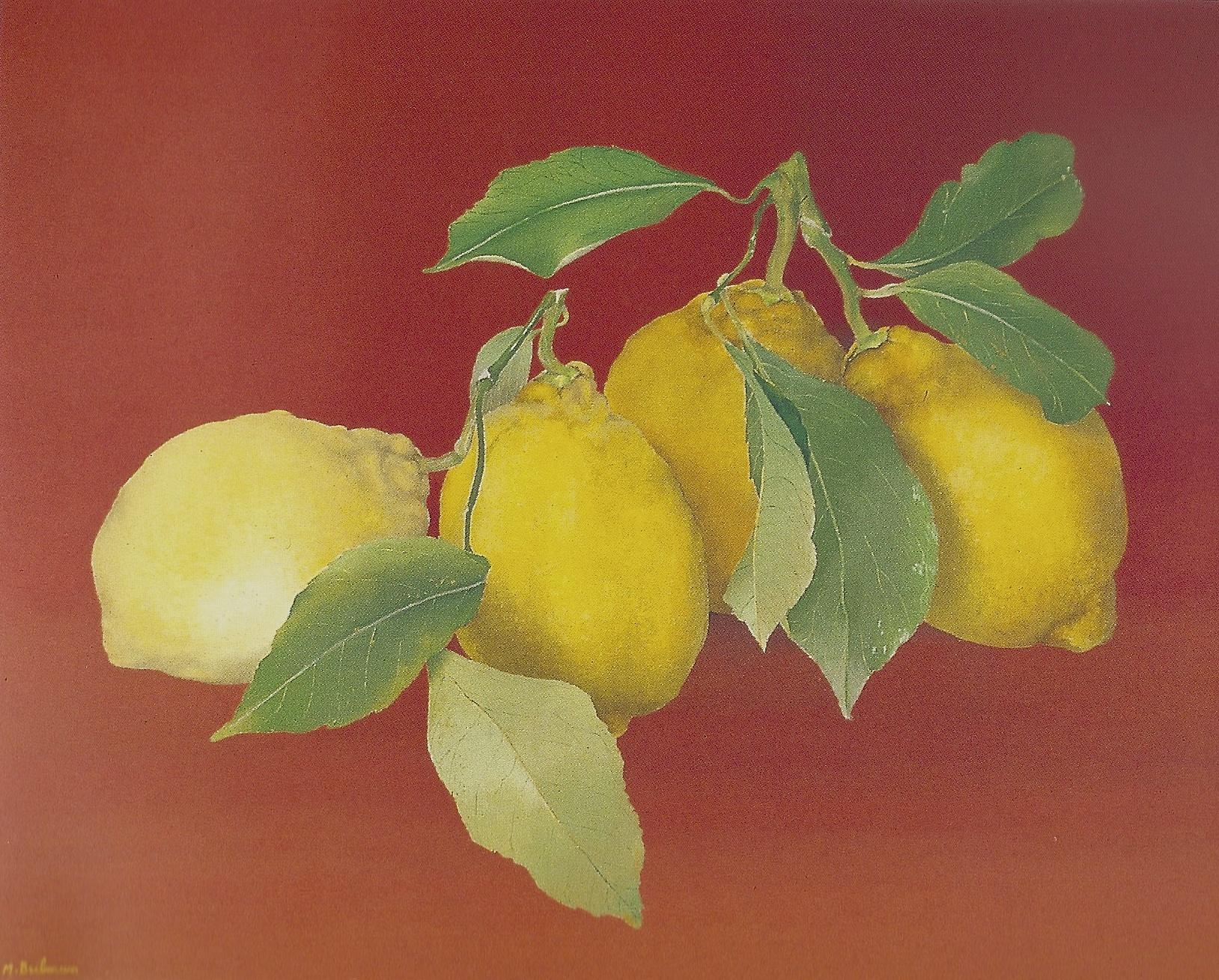 Citrons sur fond rouge