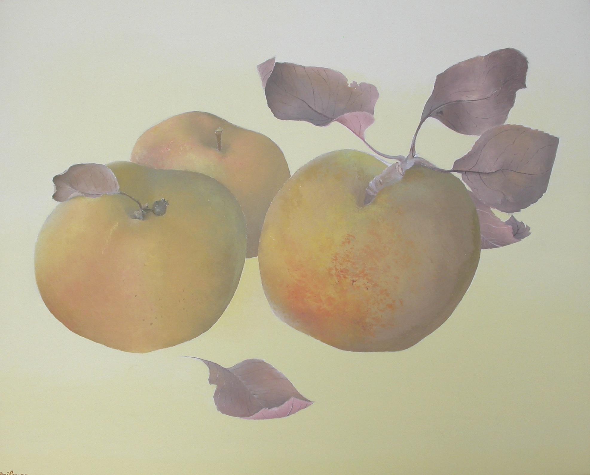 Les pommes dorées