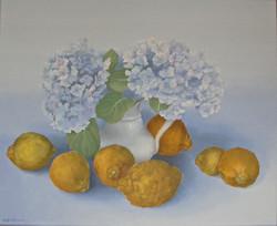 Lemons from Portugal